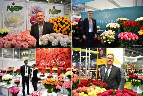 FloralDaily: global flower news on french country garden wedding, french country woods, pinterest french country gardens, williamsburg flower gardens, french country trees, french garden cart, tudor flower gardens, contemporary flower gardens, french country gazebo, french country churches, french country painting lilacs, french country tulips, french country fields, prairie flower gardens, casual flower gardens, french country nature, adirondack flower gardens, log flower gardens, paisley flower gardens, provence flower gardens,