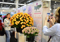 Pictures being taken all over. Also the varieties of rose breeder NIRP are shining bright on photos.