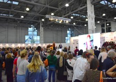 Florists' shows attracting lots of attention.
