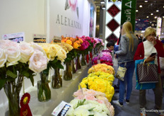 Alexandra Farms presented its garden roses in order of color.