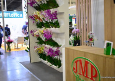 The orchids of JMP Flowers.