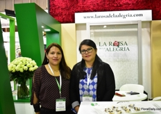On 10 ha, Rosa de la Alegria produces 20 varieties of roses in Tabacundo, Ecudor. On the picture: Lorena Dareds and Lorena Cachipuendo.