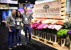 Juan Carlos Alvarez, Cristy Herrera and Santiago Lora of Falcon Farms. In Ecuador, they grow roses and in Colombia several other flowers like pompom, disbud and mini carnations. Their main market is the US and Canada where they supply supermarkets and wholesalers.