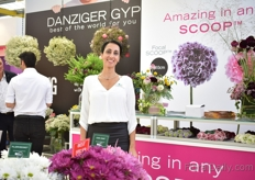 Anat Moshes of Danziger presenting the new Focal Scoop. It is a new Scoop variety that has a large bud size (8-10cm). More on this variety later in FloralDaily. Another highlight at their booth was the gypsophila (on the left). They divided their gyps varieties in three categories; big, small, color. As they see that these are the groups that are most demanded.