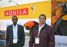 Part of the team of Aquila