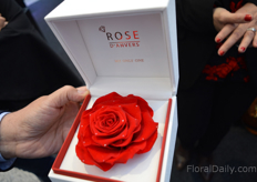 Rose with real diamonds - all the way from Antwerp