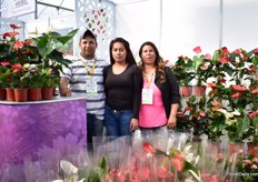 The team of Vivero los Pinos, Mexican Anthurium growers.