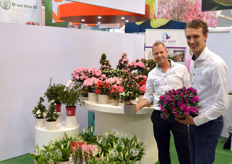 Fabian Noordermeer and Luc van der Sar of Van der Voort. In Essen, the grower presented, among others, the azalea Himalaya, which stands out with its shape and multitude of flowers.