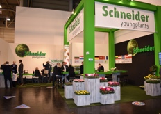 Schneider Youngplants presented nicely this year.