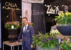 Emiel van Tongerlo representing Zabo Plant at the IPM and presenting the new Calla Nova series and the Pot Lilies and Roselilies.
