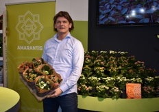 Jan Pieter of Amarantis proudly presenting a tray of kalanchoe