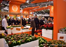 The large booth of Dmmen Orange.