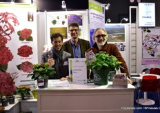 Lionel Chauvin, Didier Boos of HW and Karl Stof of Chauvin present the French Bolero, a new hydrangea bred by several French breeders.