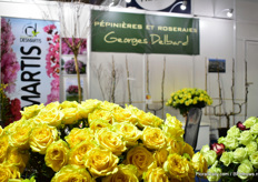 Also at  bij Georges Delbard cut roses were on display.