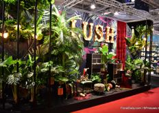 Also in Chirstmas world, some exhibitors incorporate plants in their designs.