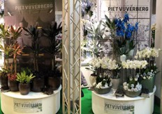 The display of Piet Vijverberg at the booth of Royal FloraHolland booth.