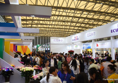Very busy at the Asocolflores pavilion (Colombian growers) and Expoflores pavilion (Ecuadorian growers).