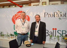 Peter Pol and Han Hendrikse of ProRoot. With their ProRoot rootstocks, they have grown significantly over the last years, not only in Kenya, but in South America as well. Currently, in Kenya they supply around 10 percent of the rootstocks that are being replaced anually. With their rootstocks, the yield of a rose plant is 20% higher.