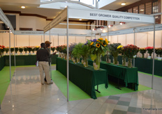 The varieties on display that competed in the Best Grower Quality Competition.