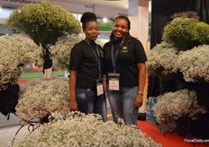 Serah Ndirangu and Ruth Mwangi of Galaxy Flowers. This company was established in September 2017 and they grow gypsophila and limonium on a 6ha farm.