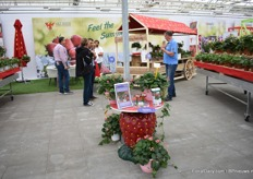 Summer Breeze created a relaxed atmosphere at the booth of ABZ Seeds.