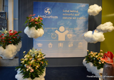"Airthurium is a new concept that emphasizes on the air cleaning characteristic of the anthurium. ""Anthuriums clear the air of toxic substances and even secrete substances, that eliminate moulds and viruses."""