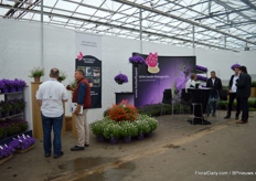 At Green05, Butterfly Garden was also presenting its varieties.