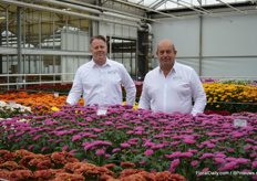 Ralph Koopman and Gerard Lentjes of Armada presenting cut chrysanthemum Anquetil, a variety that is performing well in both the heat and cold. Last year, they started with this variety in the Netherlands. In South Europe and Asia, it is increasing in popularity.""