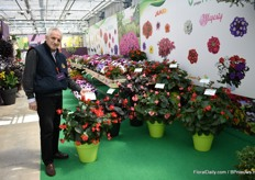 Rino Caccia of Padana presenting the begonia Sensy series, a line that comes out of their own selection. The line consists of 7 varieties (2 XL varieties, 2 chocolate leave and 2 green leave varieties). They are early, have a mounded habit and the red they have exclusive, explains Caccia.
