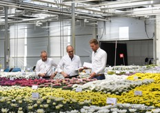 People from Deliflor checking their plants.