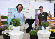 Nicolas de Vriendt and Arthur Wijkaert of DeCock presenting Lavandula stoechas Fantasia Early Purple (on the right) and Mentha Spicata Decock (on the left). The lavendulan is early flowering and re-floweres intensively. Mentha is a selected variety, compact large leaves and short distance between leaves.