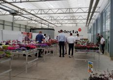 At Selecta in Germany.