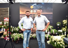 Sacha Wordtmann and Sebastian heinje of Heinje. In Ammerland, Northern part of Germany, they grow a lot of varieties, over 4,500. They also organize a fair at their site, 2 times a year.