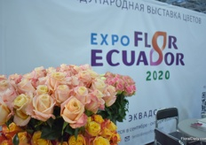 Next year, the second of Expo Flor Ecuador 2020 will be held in Quito, Ecuador. It is an event that is being held every 2 years.