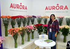 Aurora, a Floraverda and Rainforest certified grower in business for 35 years already. Interesting enough, the flowers (carnation, spray-carnation, and roses) are produced on an acreage of 35 hectares. On the photo Roxana Londono.
