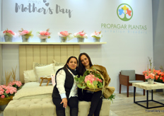 Zandra Duarte and Ruth Espinosa at Propagar Plantas, one of the two carnation breeders of Colombia.