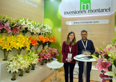 Inversiones Montanel is one of the view lily growers in Colombia. Interestingly, since Bogota is close to the equator, the farm is able to produce flowers year round. On the photo Laura Arboleda and Juan Manuel Alonso.