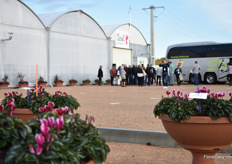 Guests entering the new greenhouse of Morel.
