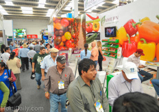 Ahern Seeds is a distributor of many breeders.