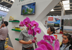 Beautiful orchids at Koppert booth.