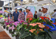 The Phalaenopsis and Anthuriums from Anthura attracted a lot of attention from the Mexican growers.