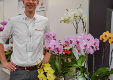 Marco Knijnenburg with Anthura's Phalaenopsis varieties.