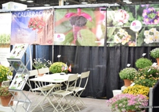 The booth of Cohen Propagation Nurseries.