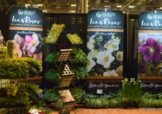 The booth of Skagit Horticulture.