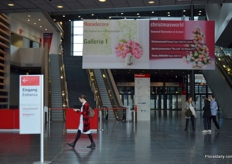 The entrance. This year, the floradecora is held in Galeria 1; the centre of Christmasworld.