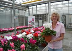 Carolien Klein of Varinova holding the Magnia white 17cm. The Magnia series consists of six colors and is suitable for 14-17 cm pot sizes. It has large flowers and green leaves.