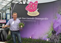 Jaap Zeelenberg represents Butterfly Garden at the FlowerTrials. On the picture: the Lavendula Stoechas. This lavendel has a large amount of flowers, keeps flowering anf flowers more times.