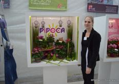 Marlies Bensdorp de Labaca, from the French breeder Morel Diffusion, with the new concept Pipoca