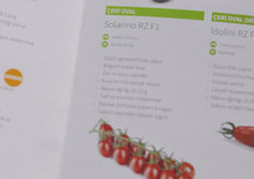 Solarino is one of Rijk Zwaan's premium oval cherry tomatoes for the Turkish market.