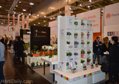 FloraHolland hosted over ten nurseries in their stand.